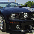 Ford Mustang Roush by James C Thomas