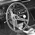 Ford Mustang Shelby In Black And White by Pamela Walrath