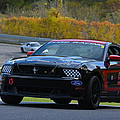 Ford Racing 59 Boss 302 Mustang by Mike Martin