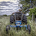 Ford by Savannah Gibbs