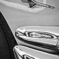 Ford Thunderbird Emblem -0505bw by Jill Reger
