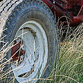 Ford Tractor Tire by Jennifer Ancker