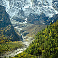 Forest And Mountains In Himalayas by Raimond Klavins