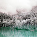 Forest And Pristine Lake by Marlene Ford