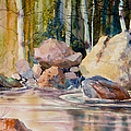 Forest And River by Teresa Ascone