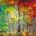 Forest by Bozena Zajaczkowska