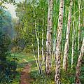 Russian Forest Footpath by Galina Gladkaya