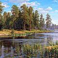 Forest Lake by Basov