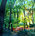 Forest Scene 1 by Kathy Braud