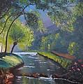 Forest Stream by Mykhajlo Vaidulych