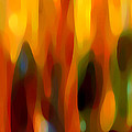 Forest Sunlight Horizontal by Amy Vangsgard