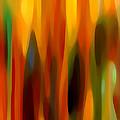 Forest Sunlight Vertical by Amy Vangsgard