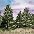 Forest's Edge by B Kathleen Fannin