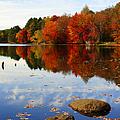 Forever Autumn by Luke Moore