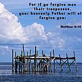 Forgive Men  by Sheri McLeroy