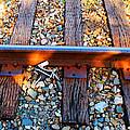Forgotten - Abandoned Shoe On Railroad Tracks by Sharon Cummings