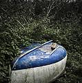 Forgotten Boat by Svetlana Sewell