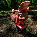 Forgotten Playground by David Dufresne