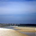 Forida Beach by Debra Forand