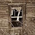 Forlorn Window by Douglas Barnett