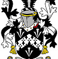 Forster Coat Of Arms Irish by Heraldry