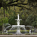 Forsyth Park Fountain - D002615 by Daniel Dempster