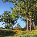 Fort Donelson by Mary Almond