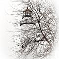 Fort Gratiot Lighthouse  by Grace Grogan