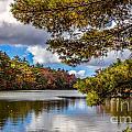Fort Mountain State Park Lake Trail by Bernd Laeschke