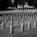 Fort Rosecrans Cemetery by Nathan Rupert