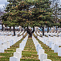 Fort Snelling National Cemetery by Paul Freidlund