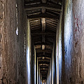Fortified Covered Walkway by Tim Holt