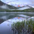 Fortress Mountain Alberta Canada by Tim Fitzharris