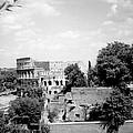 Forum Romanum Rome Italy by Heike Hellmann-Brown