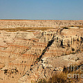 Fossil Exhibit Trail Badlands National Park by Fred Stearns