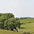 Fossil Prairie Panoramic 3 by Bonfire Photography