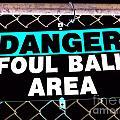 Foul Ball Area by Ed Weidman