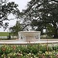 Fountain At Nottoway by John W Smith III