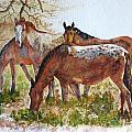 Four Horses Grazing by Maris Sherwood