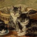 Four Kittens by Henriette Ronner Knip