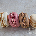 Four Macarons In A Row by Liz Leyden