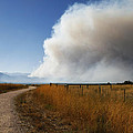 Four Mile Canyon Fire Colorado by Marilyn Hunt