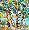 Four Palms by Lou Ann Bagnall