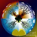 Four Seasons Roundel by Neil Finnemore