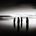 Four by Simone Byrne Photography