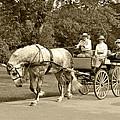 Four Wheel Cart Family by Wayne Sheeler