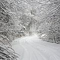 Four Wheel Winter by John Haldane