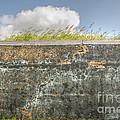 Fourt Moultrie Battery Jasper Wall by Dale Powell