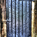 Fourt Moultrie Door by Dale Powell