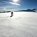 Fox Glacier by Amanda Stadther